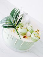 mariasweetcakery Jungle groen